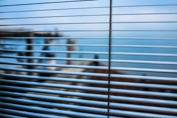 newton blinds_0